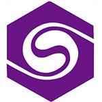 济南圣泉集团股份有限公司logo