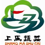 青岛祥泰绿色农业科技有限公司logo