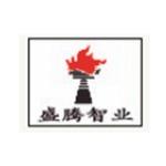 沈阳盛腾智业信息技术有限公司logo