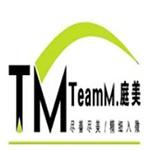 西安庭美装饰工程有限公司logo