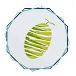 武汉哈蜜瓜科技有限公司logo