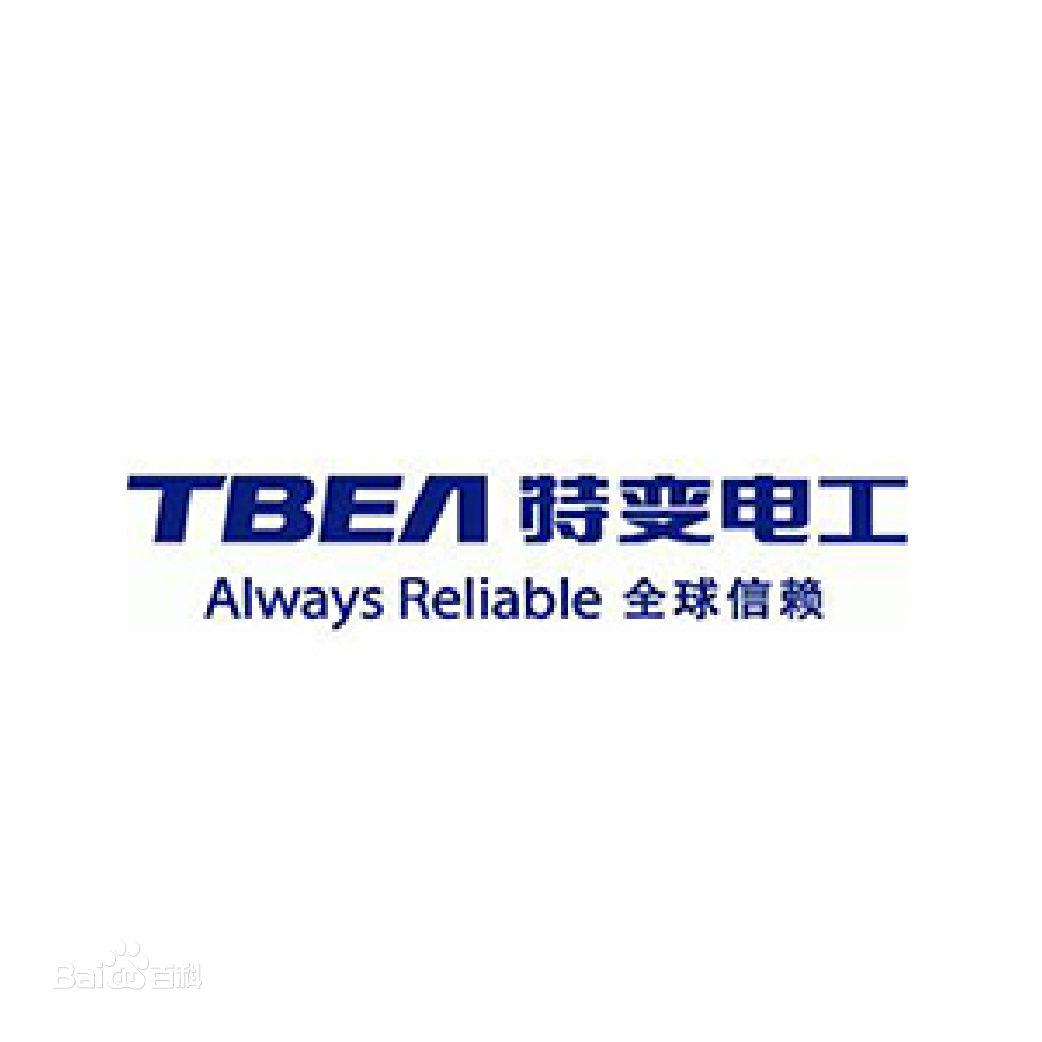 特变电工国际工程有限公司logo