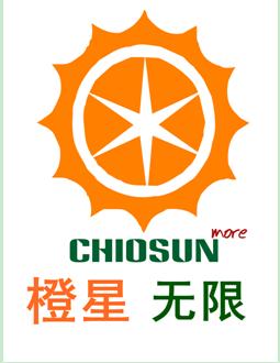 武�h橙星�o限商�Q有限公司logo