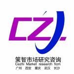 武汉策智市场调研有限公司logo