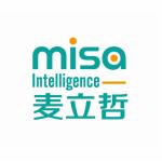 迈飒(上海)商务咨询有限公司logo