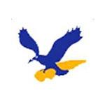 青岛飞宇天下航空服务有限公司logo