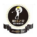 大连明日之星体育产业有限公司logo
