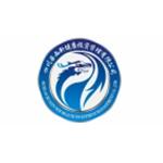 四川�A西新健康投�Y管理公司logo