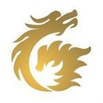 北京金瑞龙?#32856;?#32593;络科技有限公司天津分公司logo
