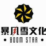 武汉暴风雪文化传媒有限公司logo