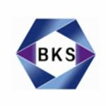 南京宾克斯信息科技有限公司logo