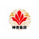 广州市神齐企业管理有限责任公司logo