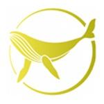 上海鲸航资产管理有限公司logo