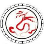 深圳前海盘古通元金融服务有限公司湖南分公司logo