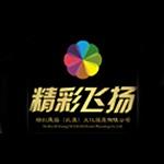 精彩�w�P(武�h)文化�l展有限公司logo