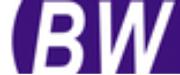 临沂邦文企业信息咨询管理有限公司logo