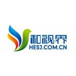 深圳和视界实业发展有限公司logo