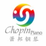 深圳市星驰文化艺术有限公司logo
