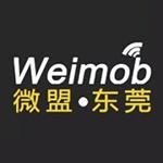 东莞微盟互联网服务有限公司logo