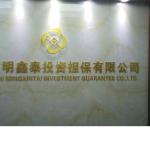 明鑫泰投资担保有限公司logo