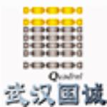 深圳市国诚投资咨询有限公司武汉分公司logo
