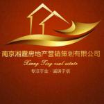 南京湘霆房地产营销策划有限公司logo