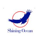深圳市海光国际物流有限公司logo