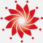 中国―东盟信息港股份有限公司logo