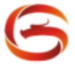 陕西中清龙图数字科技有限公司logo