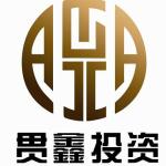 沈阳贯鑫信息咨询有限公司logo