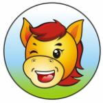 南京天马国际旅游有限公司logo