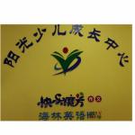 南宁市盛莱特教育咨询有限公司logo