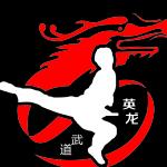 深圳市英龙武道文化发展有限公司logo