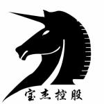 深圳市前海宝杰顶级股权投资有限公司logo
