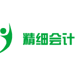 深圳市精细财务服务有限公司logo