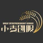 小麦创服河北信息技术服务有限公司logo