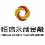 深圳市恒信永利金融服务有限公司南宁分公司logo