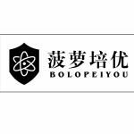 慈溪菠萝教育信息咨询有限公司logo