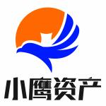 广州小鹰资产管理有限公司logo