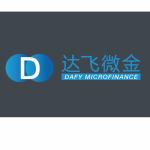 达飞微金海口分公司logo