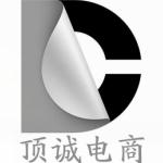 四川顶诚人力资源管理咨询有限公司logo