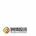 深圳市洲绅投资管理有限公司logo