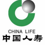 中国人寿集团公司logo