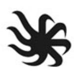 长沙高新区腾飞传媒培训学校logo