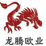 广州龙腾欧业信息科技有限公司logo