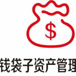 江西钱袋子资产管理有限公司logo