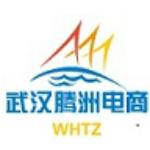 武汉腾洲电子商务有限公司logo