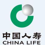 中国人寿保险股份有限公司西安分公司南大街营销服务部logo