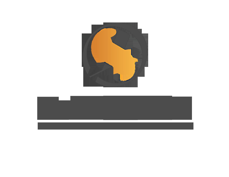 深圳国金国银集团股份有限公司logo