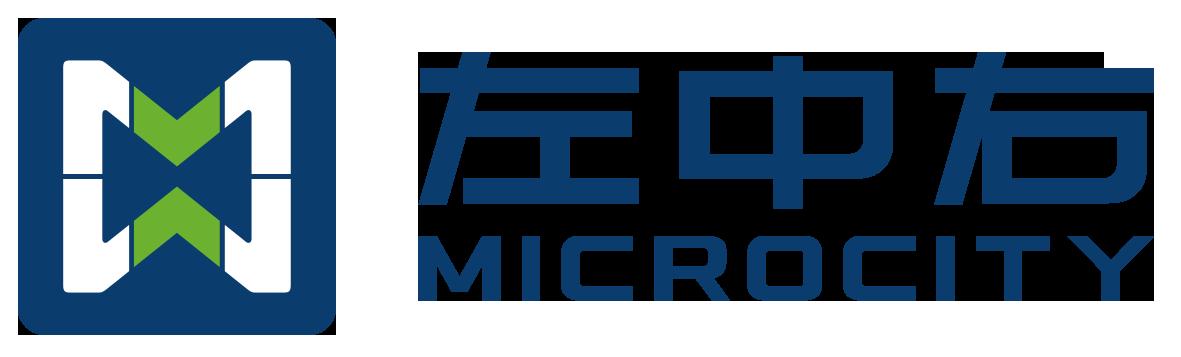浙江左中右电动汽车服务有限公司logo